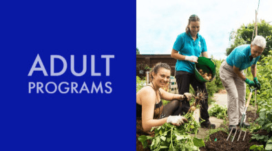 Browse Adult Programs