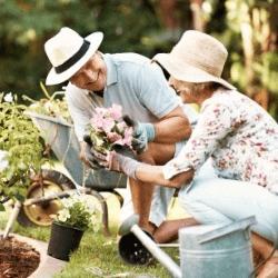 Adult Enrichment